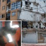 Gatita que se encontraba bajo los escombros es rescatada viva a casi un mes del sismo