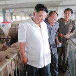 'Pese a sanciones de EU economía de Corea del Norte crece': Kim Jong-Un
