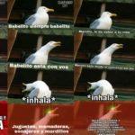 ¿Dónde surgió el Meme de la gaviota que se ríe?