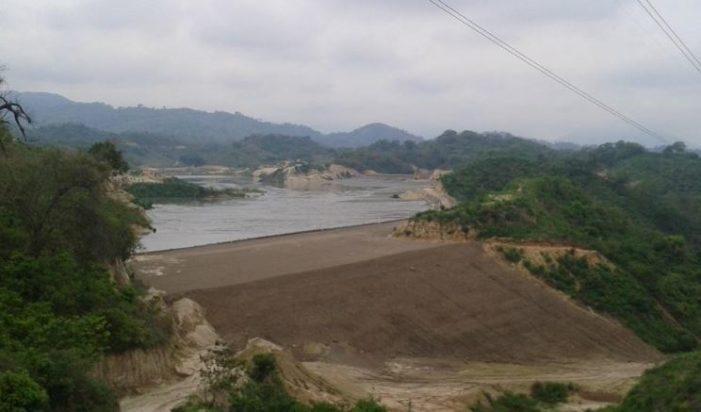 Los defensores de árboles autorizan a minera que tale 400 hectáreas de bosque