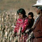 Priistas e inversionistas bloquean acceso al agua a comunidad indígena en Chihuahua