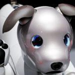 Lanzarán Aibo, el primer perro de inteligencia artificial