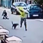 Perro defiende a una mujer que estaba siendo asaltada (Video)