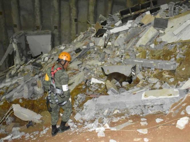 Caninos ubican a desaparecida en derrumbe de Monterrey, sigue la búsqueda