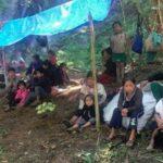 Grupo armado obliga a huir a 5 mil personas de sus comunidades en Chiapas
