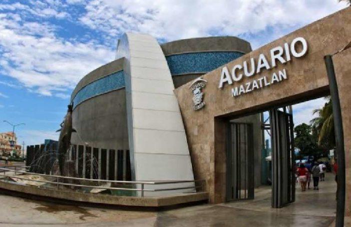 Para mejorar imagen dañada por violencia, Mazatlán construirá acuario de 129 mdd