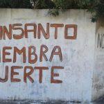 La UNAM y los transgénicos: nuevo ataque a la inteligencia