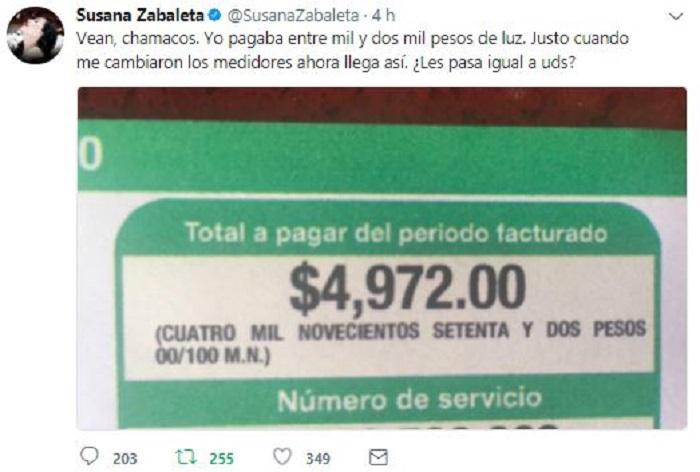 Susana Zabaleta contra la CFE por cobro excesivo