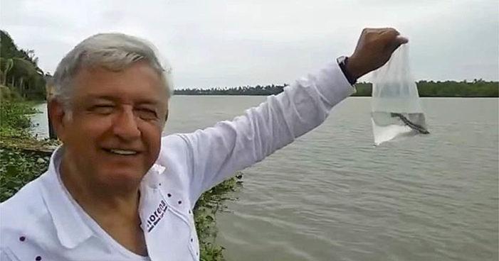 'Estoy en Tabasco y me siento como pez en el agua': AMLO