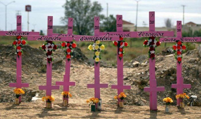 Se comete un feminicidio al día en México: SNSP