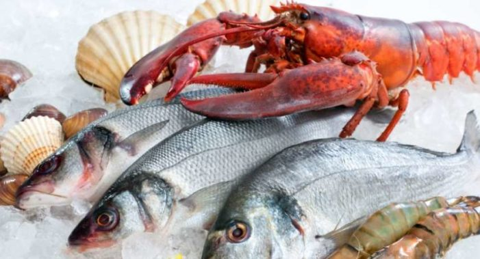 Pescados y mariscos ayudan a prevenir obesidad y diabetes