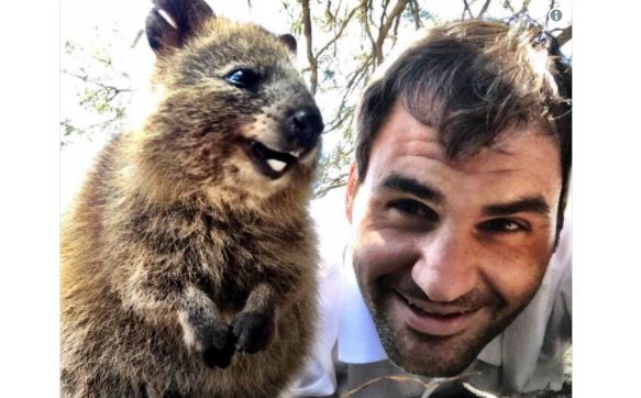 Roger Federer y el selfie con el 'animal más feliz del mundo', y más viral