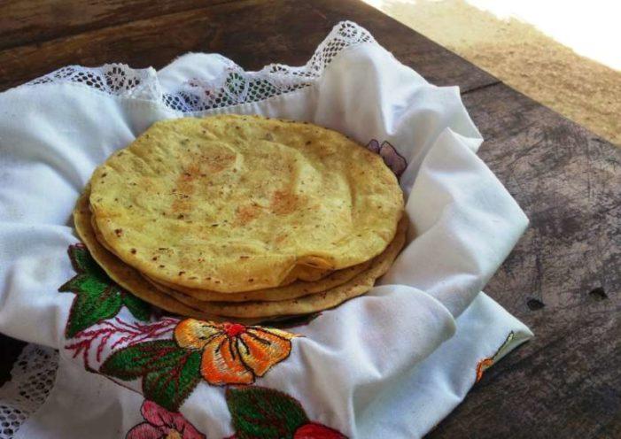 Baja 40% consumo de tortilla en México, sociedad perdió interés en elaboración tradicional