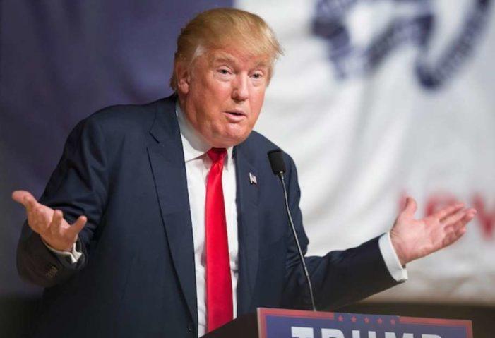 Vendría bien un poco de calentamiento global, ante el frío que azota EU: Trump