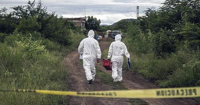 Violencia en Michoacán: Hallan cuatro cuerpos desmembrados y ejecutan a dos este fin de semana