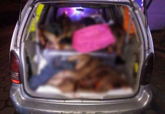 Violencia no cesa en Veracruz: hallan 9 cuerpos desmembrados en Xalapa