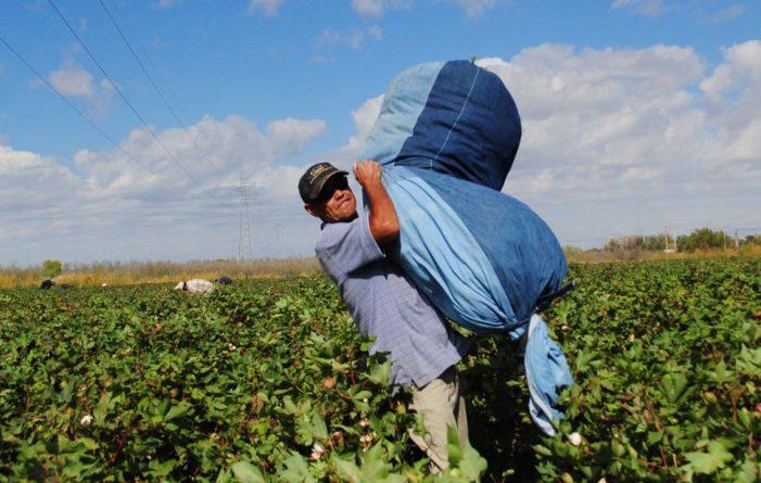 Peña Nieto presume creación de empleos, pero 80% de trabajadores ganan 80 pesos al día