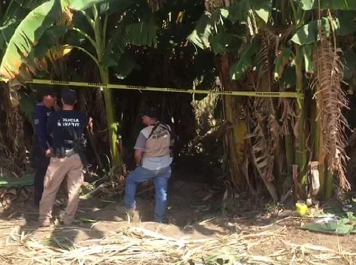 Al menos 33 los cuerpos hallados en fosa clandestina de Nayarit