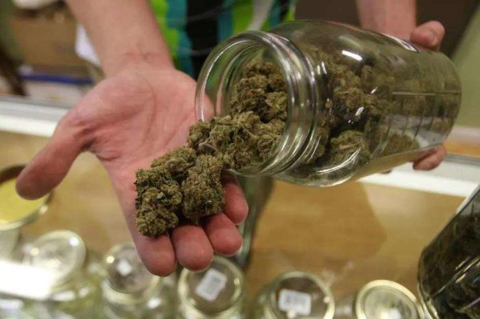Está listo el reglamento para venta de productos de cannabis: Cofepris
