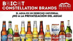 mexicali, baja california, agua, cervecera, Constellation Brands