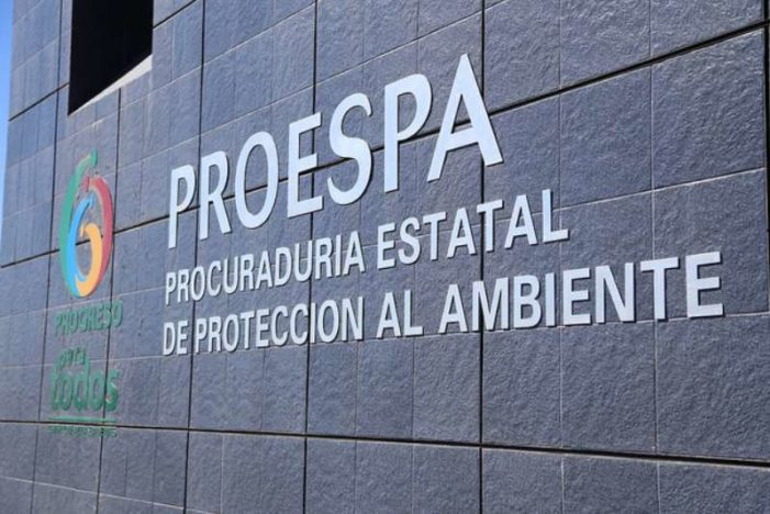 Procuraduría del Ambiente en Aguascalientes está hecha para 'chingar': funcionario