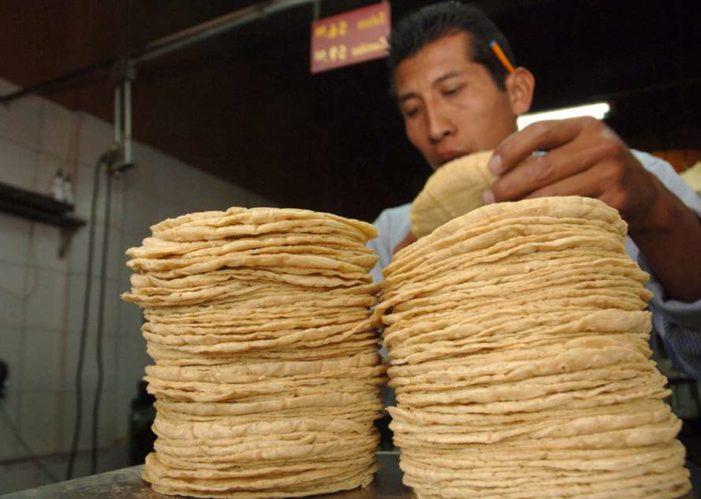 Gobierno niega que alza a los energéticos impacte en el costo de la tortilla