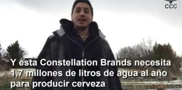 En defensa del agua en el Valle de Mexicali, video de Alemania