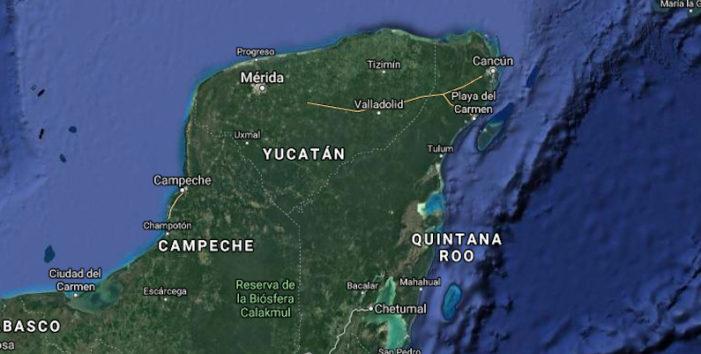 Campeche, 23 mil hectáreas de soya transgénica ilegal en 2017
