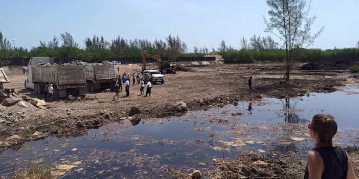 Q.Roo: Amparo contra Profepa, omisiones en 40 denuncias ambientales