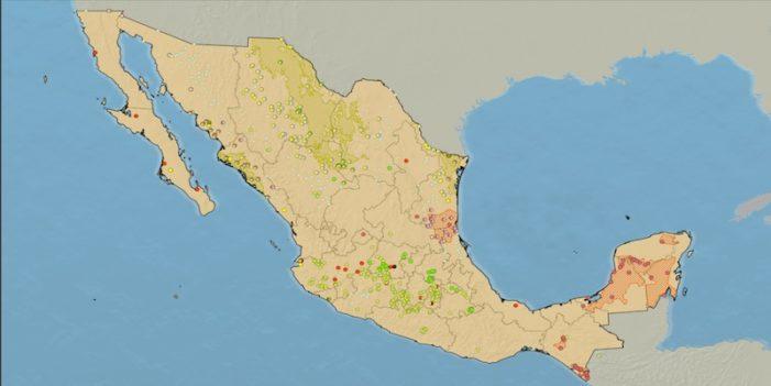 Selecto grupo de empresas controlan transgénicos en México