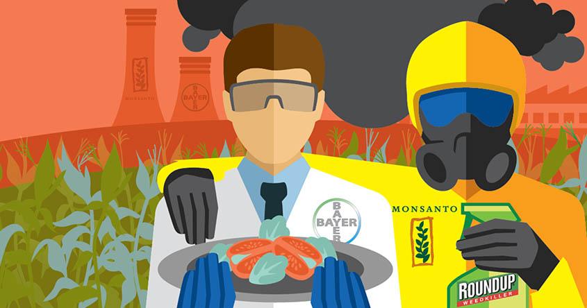 Bayer eliminará la marca Monsanto después de adquirirla por 66.000 millones de dólares y esta es la razón