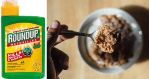 Cereales de marcas conocidas contienen glifosato, pesticida cancerígeno_ NYT