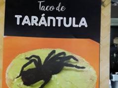 Profepa incauta tarántulas listas para ser tacos de tarántula en Mercado de San Juan