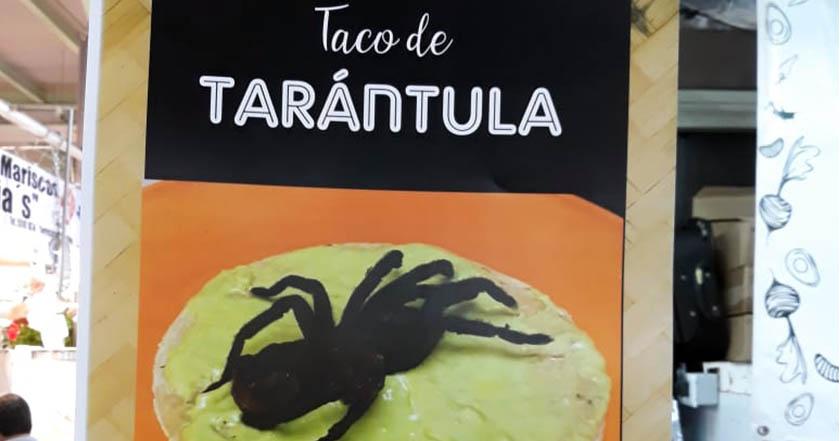 Aseguran tarántulas que eran vendidas en tacos en Mercado