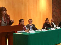 Polevnsky pide a diputados locales de Morena no se dejen comprar ni mangonear por gobernadores