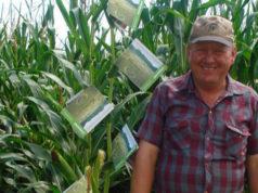 Comando armado secuestra a Johan Knelsen activista menonita anti Monsanto
