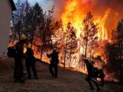 Incendios forestales más fatales en la historia de EU han dejado 42 muertos en California