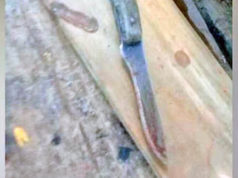 Niño de 10 años mata con un cuchillo a su padre por defender a su mamá