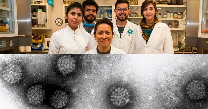 Científicos del IPN eliminan papiloma humano por completo en 29 mujeres