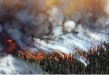 Siberia arde