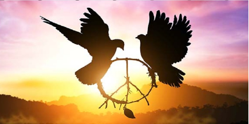 palomas y símbolo del amor y la paz