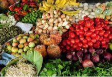 verdura mexicana, exportación