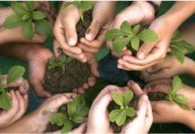 Imagen de manos sembrando