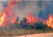 Amazonas en llamas