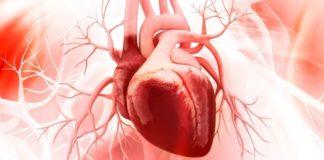 #DiaMundialDelCorazon: colesterol causa de ataques cardíacos