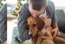 perros en Noruega con enfermedad no identificada