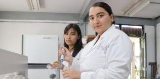 Investigadoras de Morelia crean bioplaguicida para hongos del aguacate