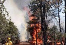 California, incendios