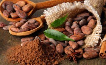 Congreso proclaman Día Nacional del Cacao y el Chocolate