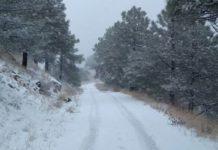 Cae primera nevada de la temporada en la Sierra Cananea, Sonora
